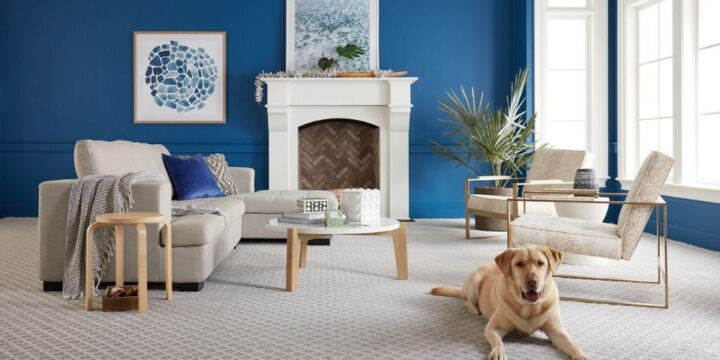 All you Need to Know About Stain-Resistant Carpets